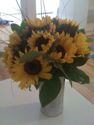 Sunflowerguy